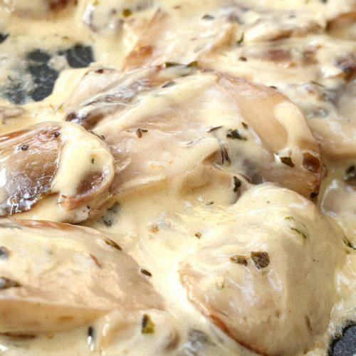 Super close up of creamy mushrooms. Specks of oregano visible. Sauce looks shiny and luscious.